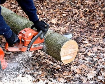 Best limbing chainsaw